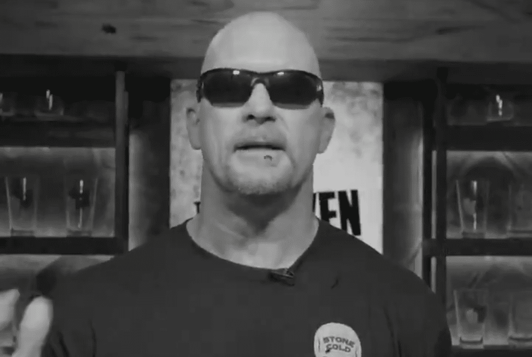 """""""Hollywood"""" Steve Austin Featured In New NWO Paid Advertisement"""